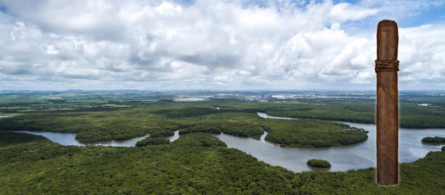 CAO Amazon Basin